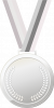 silver-gris
